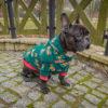 bluza świąteczna Frenczi ubranka dla psów