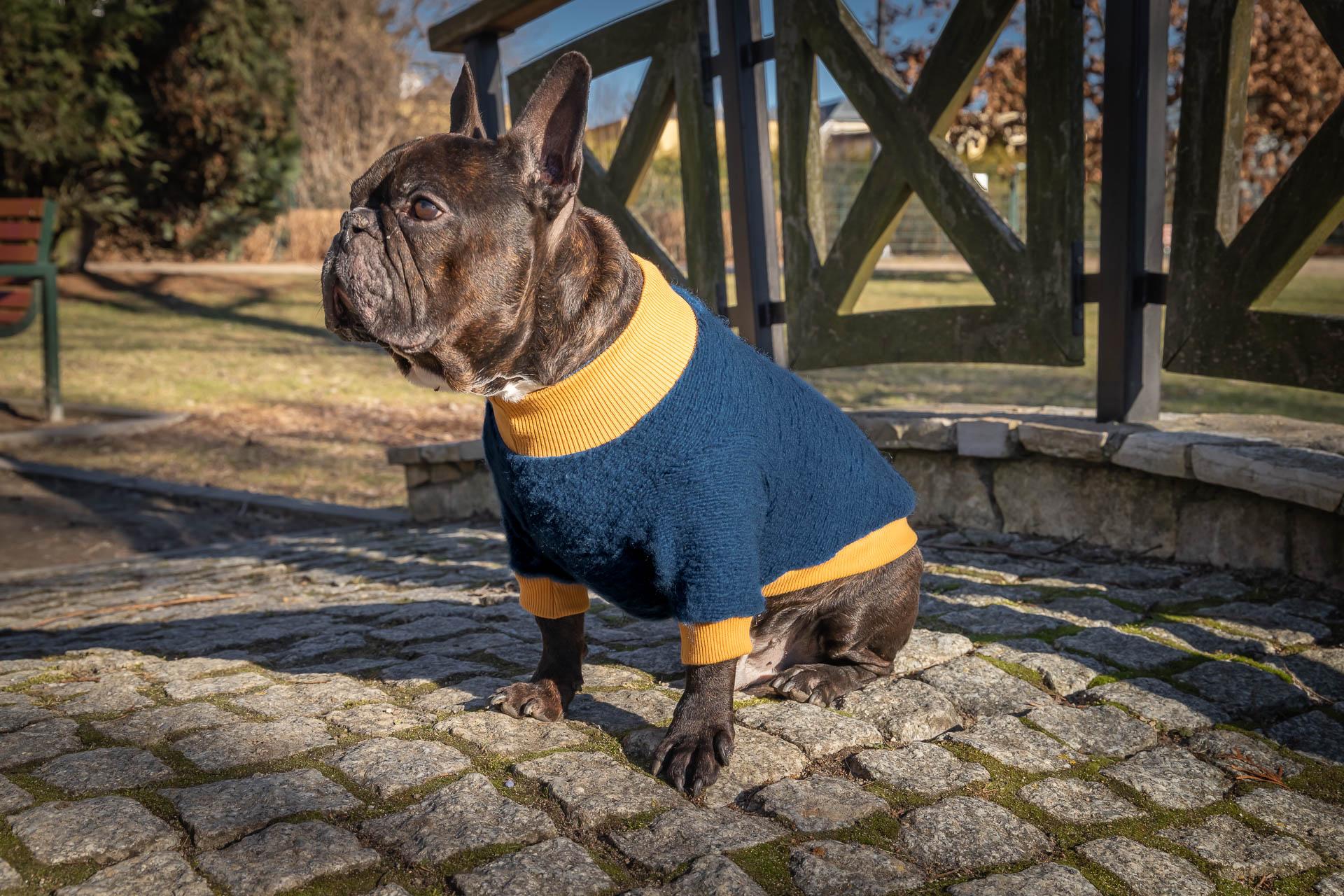 sweter wełniany Frenczi ubranka dla psów