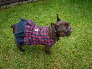 Tiulowa sukienka dla psa w czerwono-granatową kratę