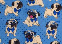 Kurtka przeciwdeszczowa dla psa marki Frenczi - ubranka dla psa na miarę. Zdjęcie wzoru do wyboru.