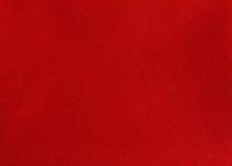 Kurtka przeciwdeszczowa dla psa marki Frenczi. Zdjęcieubranka dla psa na miarę. Kolor czerwony