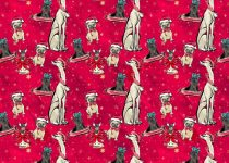 kurtka frenczi ubranka dla psa